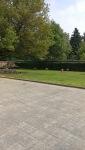 Notre espace cour et jardin