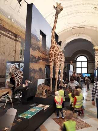 musée Afrique 1